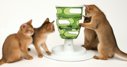 Cat-it-Senses-Food-tree