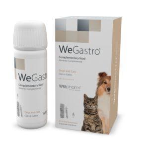 WeGastro