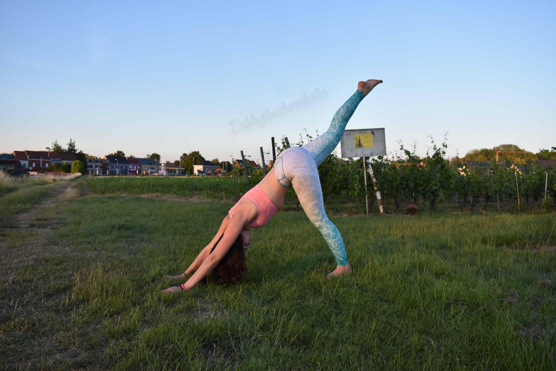 Three Legged Downward Dog - Tips om aan yoga te beginnen