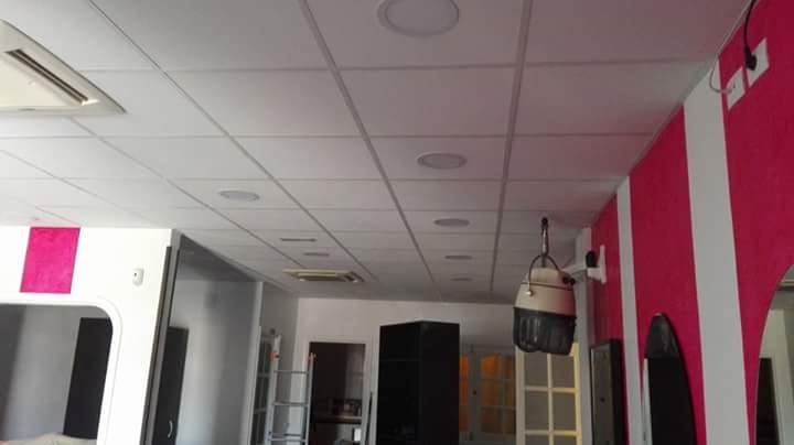 Falsos Techos Registrables y Sistemas de Placa de Yeso Laminado en Peluquería