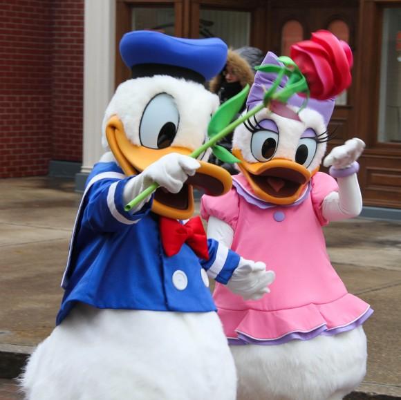 St Valentin 2013 in Disneyland Paris, Donald & Daisy