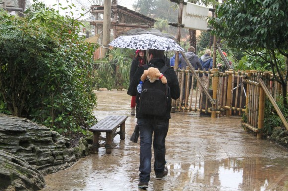 St Valentin 2013 in Disneyland Paris, Duffy gets a lift