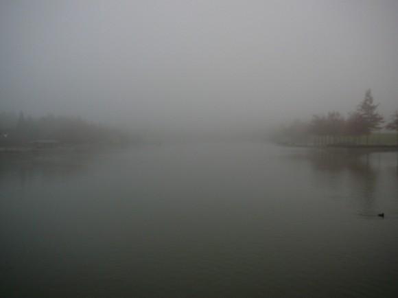Newport Bay Club Obscured by  Fog in Disneyland Paris