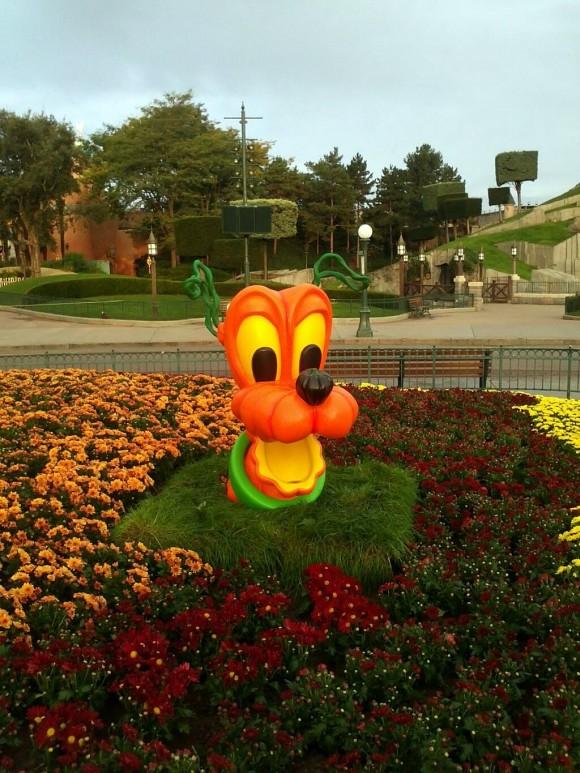 Pluto Pumpkin Head in Disneyland Paris for Halloween 2013