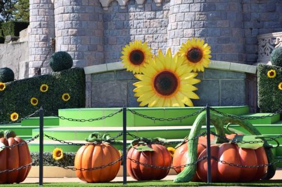 Disneyland Paris Halloween 2014: Sunflower Mickey Replaces Pumpkin Mickey