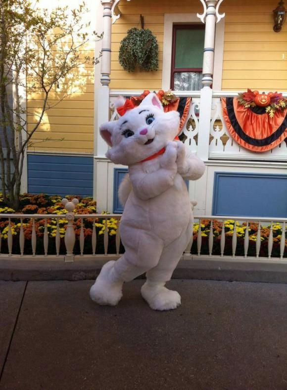 Marie Meet & Greet in Disneyland Paris