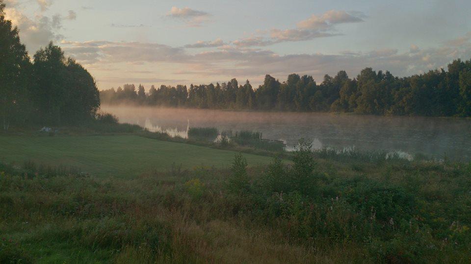 tidlig augustmorgen - hjemme - solør