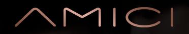 Amici Logo 2