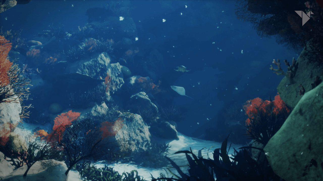 oceanWeR_09