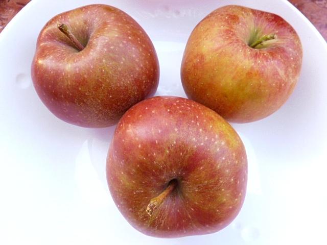 Apfelkücherl