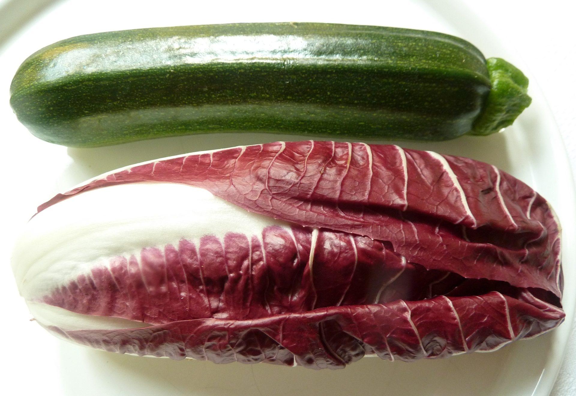 Jakobsmuscheln auf Trevisano-Zucchini Gemüse