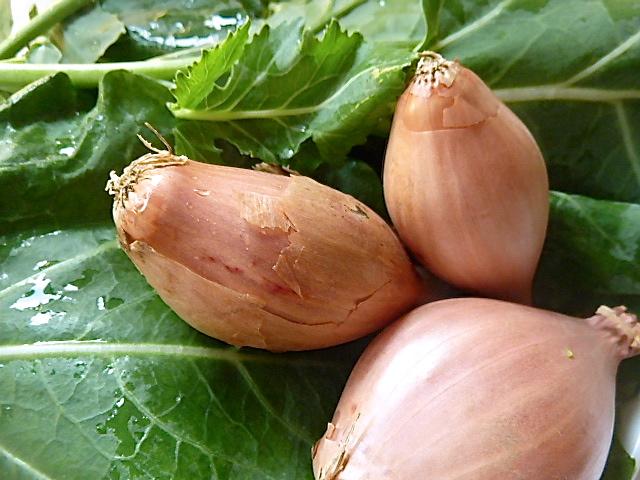 Kartoffelstampf mit Kohlrabiblättern und Reh-Chevapcici