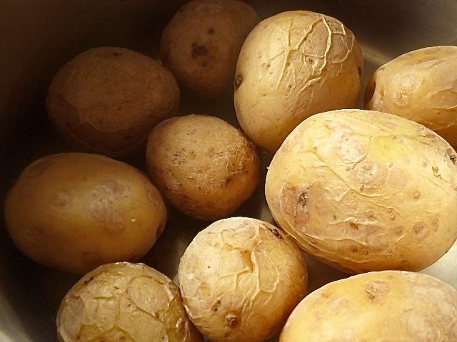 Rehfilet mit Rahmmorcheln und Kartoffelpüree