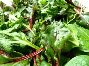 Die Salatmischung Zart & Feurig