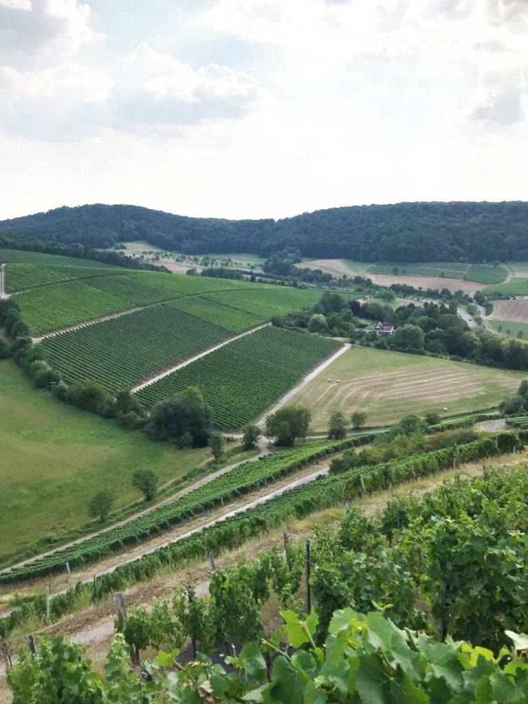 Blick von der Lage Schlossberg