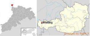 Umsatzsteueranmeldung in Österreich