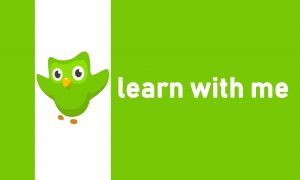 learn language from best application