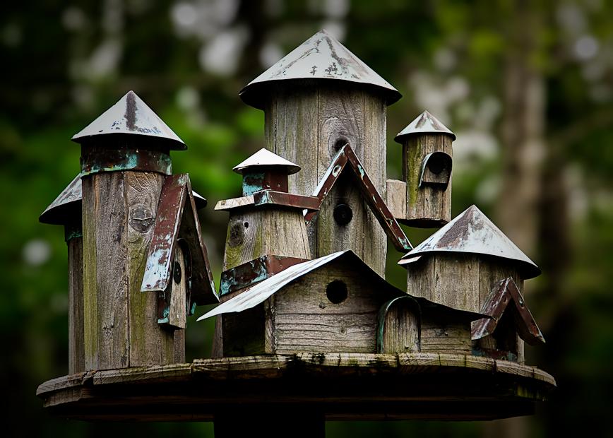 Et hus til fuglene