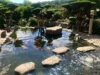 En tur til Zen-Garden
