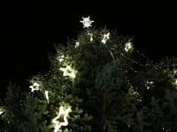 Tak for julelyset