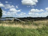 Solcellepanelerne stilles op i rækker som i eksemplet på billedet, og der kommer beplantning langs kanterne for at bevare områdets grønne præg. Pressefoto.