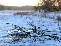 Hvordan ser dit vintervejr ud?