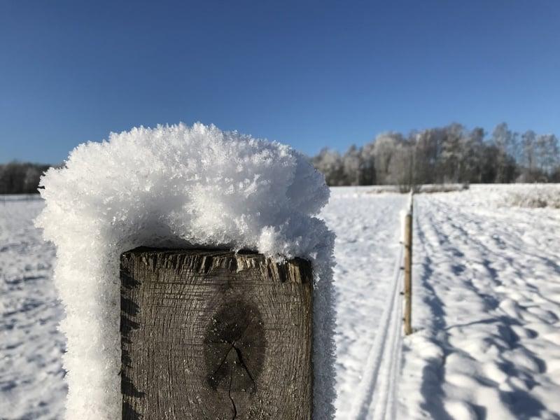 snow_on_fence