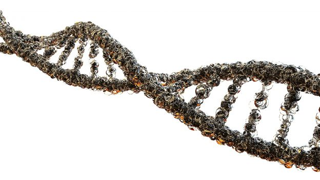 Genetics of suicide attempts in individuals with and without mental disorders