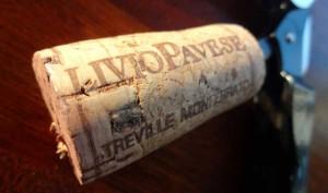 LivioPavese1