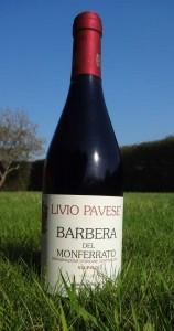LivioPavese4