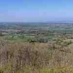 View From stinchcombe
