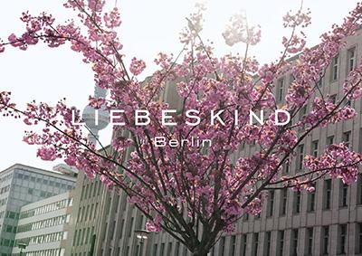 Liebeskind-Teaser-3