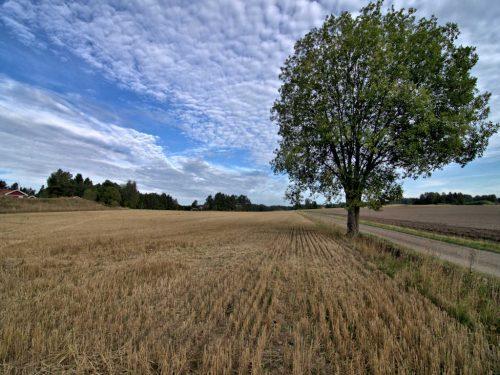 Uppsala len og Bålsta