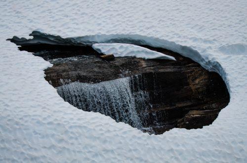 Kvamskogen og snøsmelting