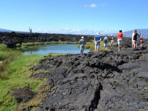 Prachtige vulkanische natuur tijdens eilandtour