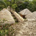 Sioana Amazone Lodge in Cuyabeno reservaat Ecuador