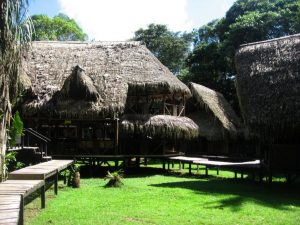 Jamu Lodge regenwoud Cuyabeno