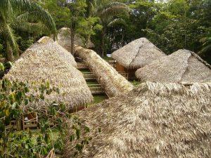 Siona Lodge Cuyabeno Amazone Ecuador