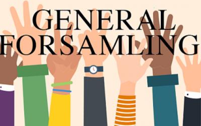 Generalforsamling 27. april 2021