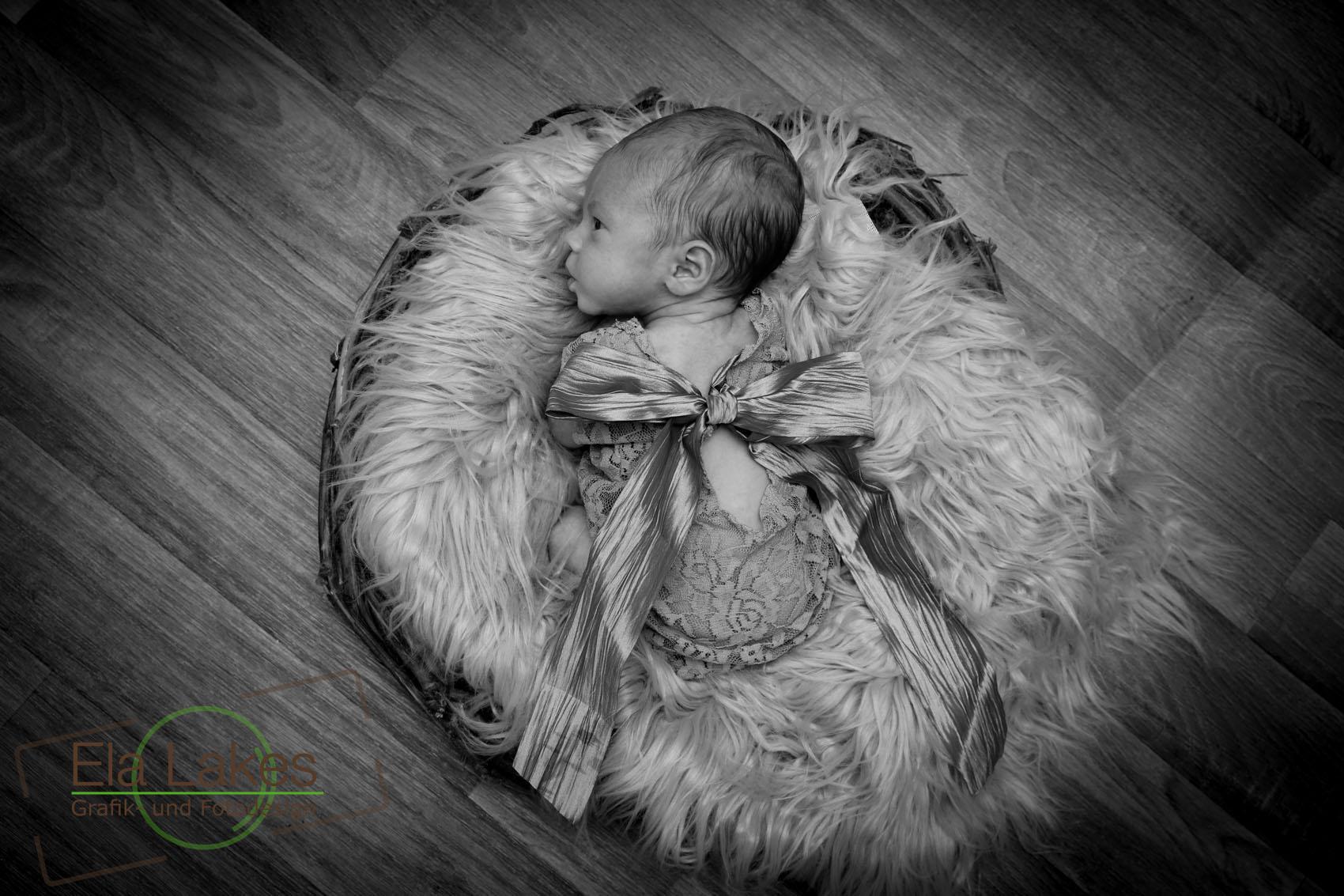 Babyfotografie Karlsruhe - ElaLakes Design -4