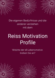 Reiss Motivation Profile erstellen