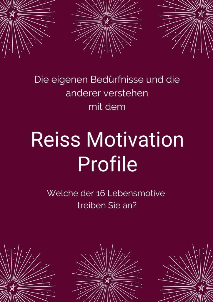 Reiss Motivation Profile erstellen