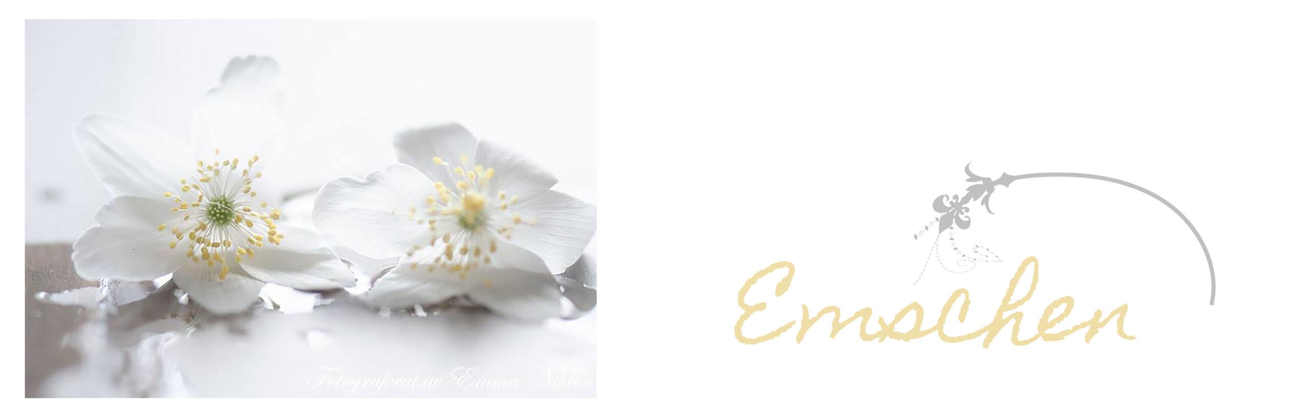 Emschen