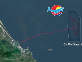 The blue whale: a significant quantity of natural gas lies within the Ca Voi Xanh field, block 118 offshore Vietnam