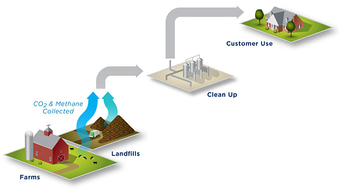 Biogas is cleaned and conditioned to remove or reduce non-methane elements in order to produce RNG, which once processed, is interchangeable with traditional pipeline-quality natural gas