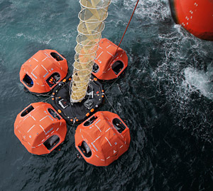 Offshore evacuation system