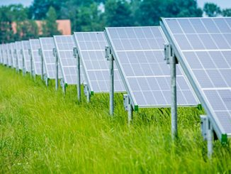 Vattenfall to investigate how to combine agricultural land and solar panels