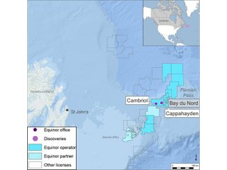 TheCappahaydenandCambriol prospects, offshore Newfoundland