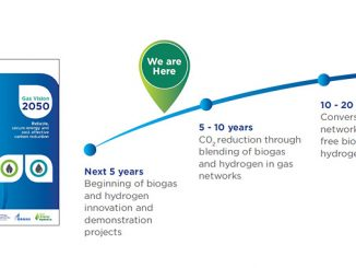 Commercial maturity for gas-transformational technologies
