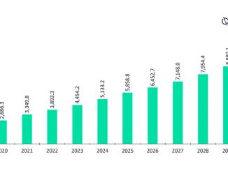 Upcoming capacity additions in Argentina's power market, 2021-2030 (source: GlobalData Power Intelligence Center)